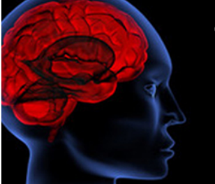 piracetam dangers